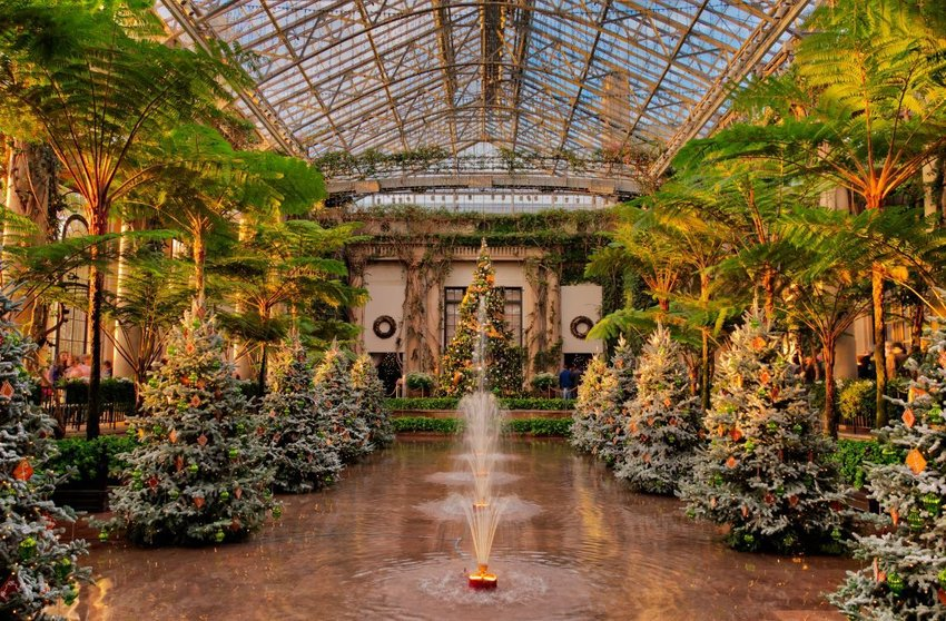 7 Best Botanical Gardens in the U.S.