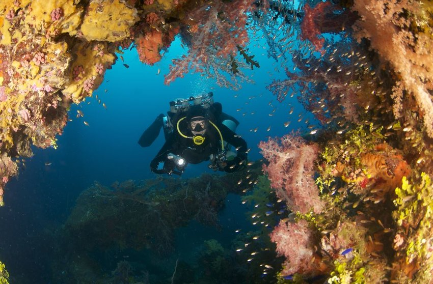 5 Unexpected Places for Great Scuba Diving
