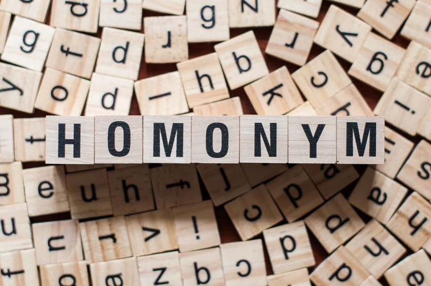 14 common words that have multiple meanings