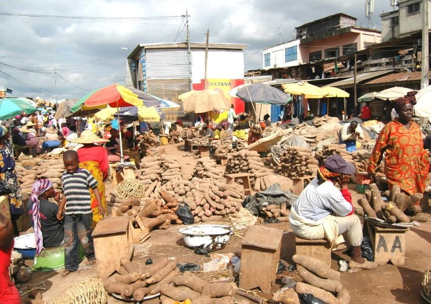 Photo of people enjoying the Yam Festival
