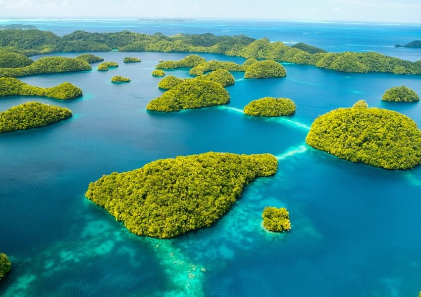 Photo of bright green islands amidst bright blue water