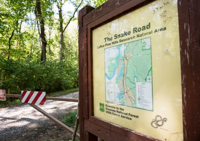 Photo of an information sign on a Snake Road trail