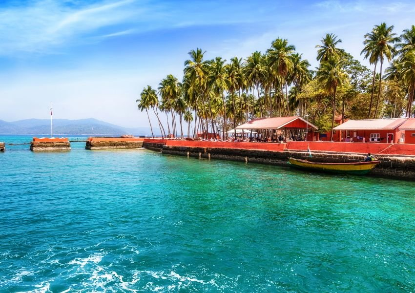 Photo of tropical setting with blue water, palm trees, and boats on the shore