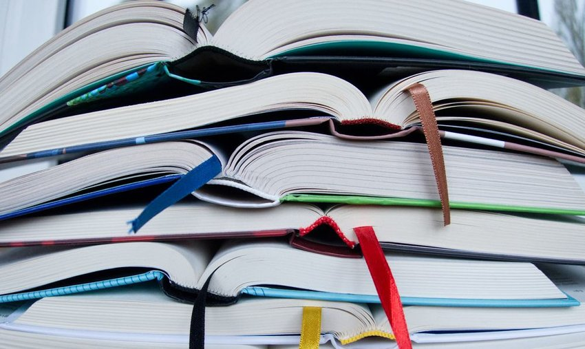 5 books to read if you love grammar