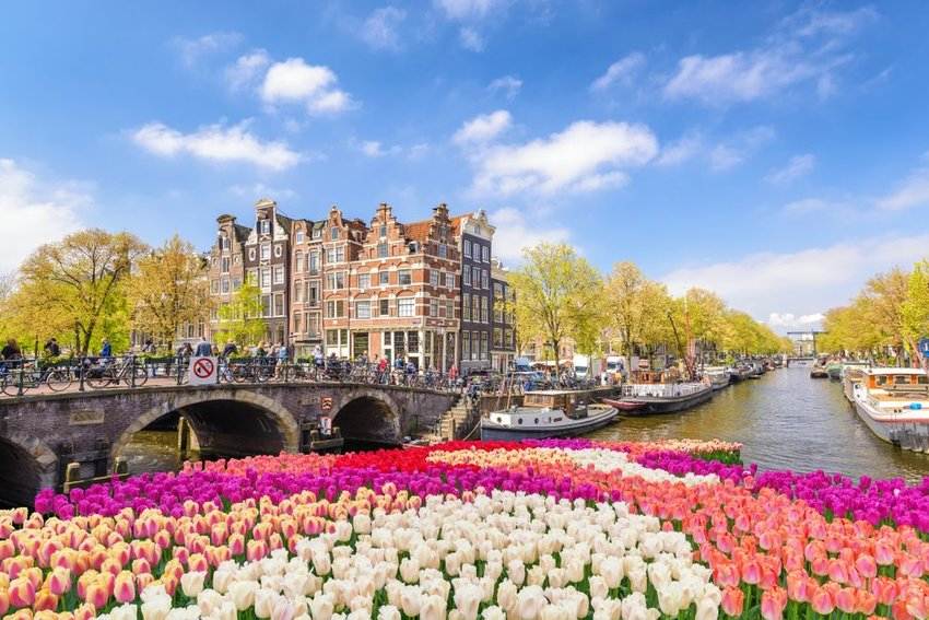 Amsterdam bridge with flowers in the foreground