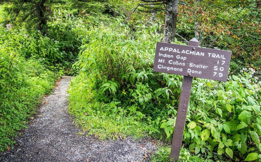 "Verdant trail with sign that says ""Appalachian Trail"""