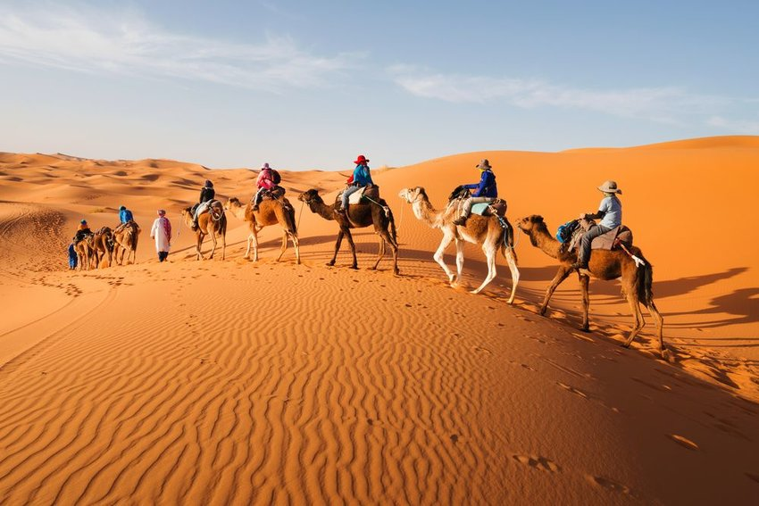 Photo of people riding camels in a sandy desert