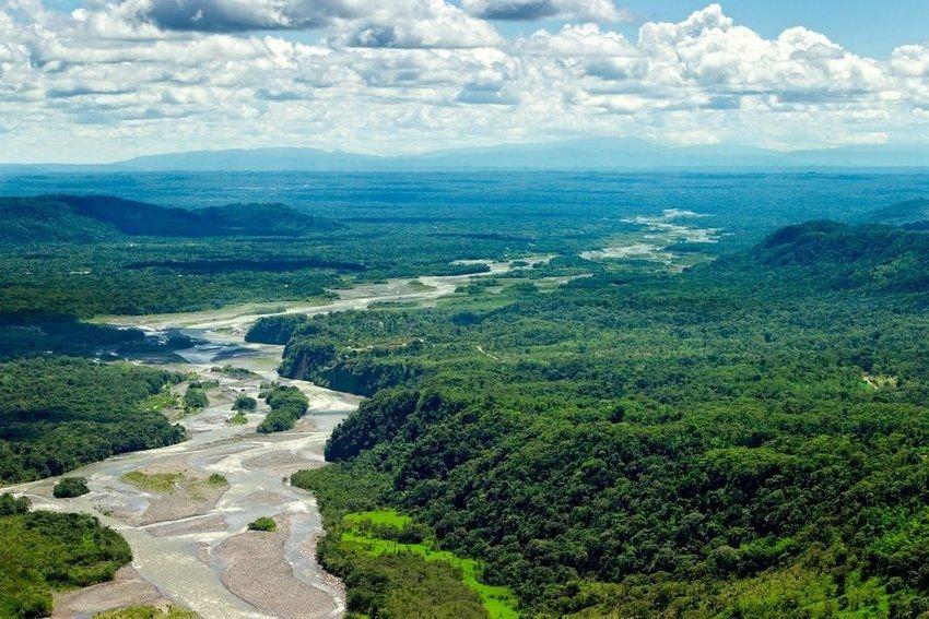 5 Fascinating Facts About the Amazon River