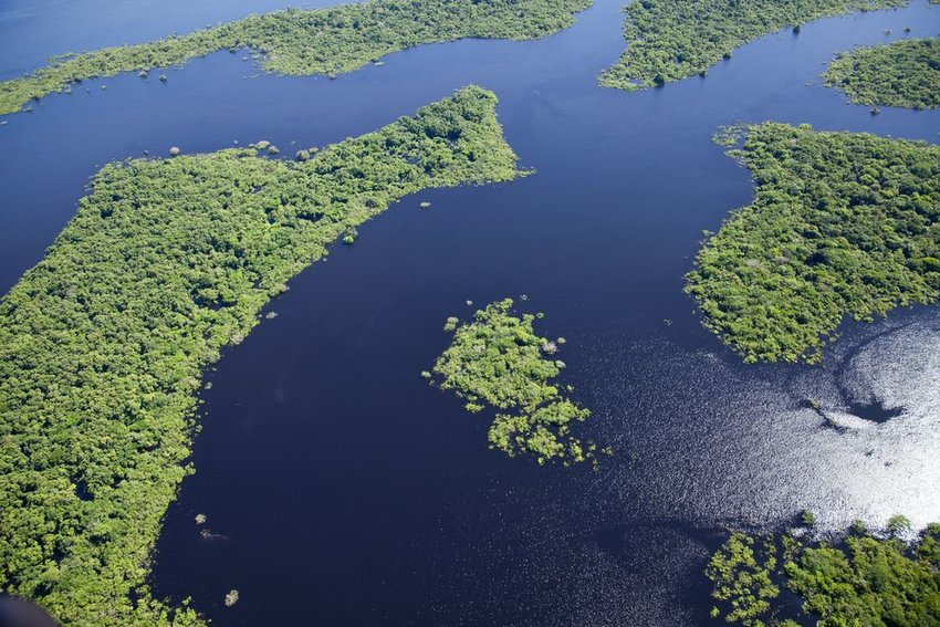 Aerial photo of Amazon River landscape on a calm day