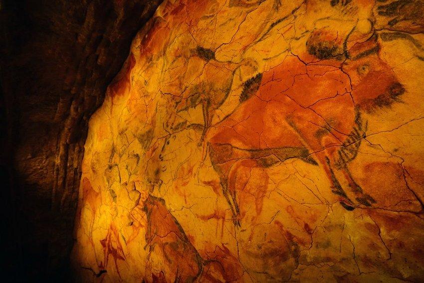 Interior of cave of Altamira with bison prehistoric rock art, a UNESCO World Heritage site in Altamira, Spain