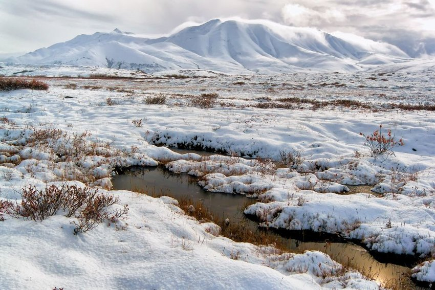 Arctic tundra near Alaska, showing snow covered grounds rolling snowy hills