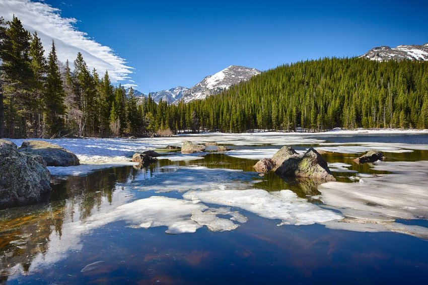 Rocky Mountain National Park in winter, showing pine trees and ice over water, Colorado