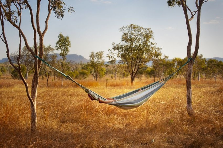 Person in hammock resting in the quiet Australian Outback, surrounded by trees and tall grasses