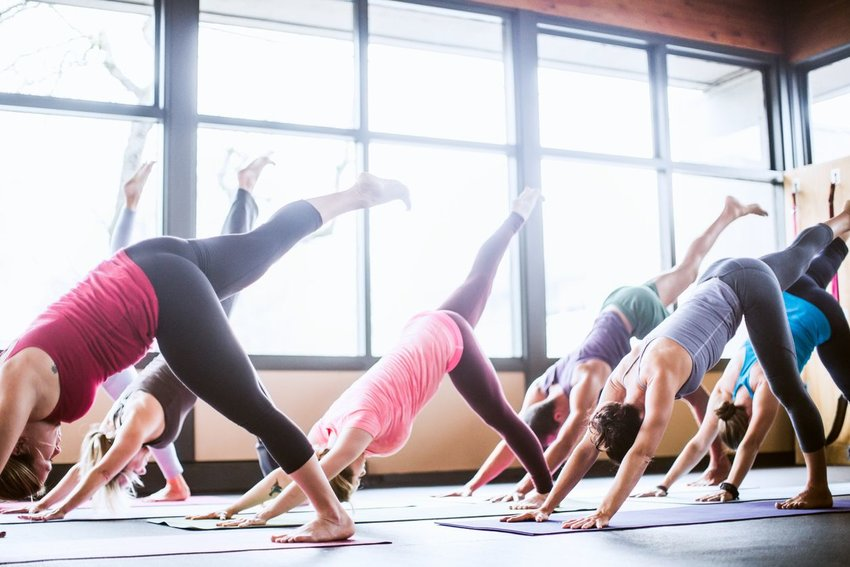 Where Did Yoga Come From?