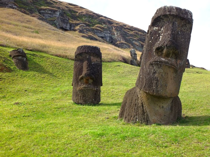 Iconic Easter Island Moai heads dotting grassy landscape
