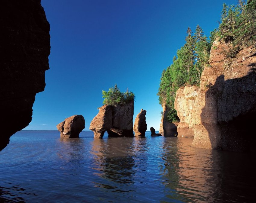 Waters of the Bay of Fundy in Nova Scotia showing rocky outcroppings and trees atop rocks