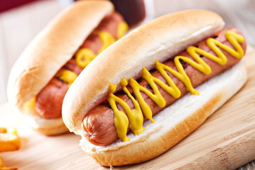 Several traditional hotdogs served in buns, covered in mustard