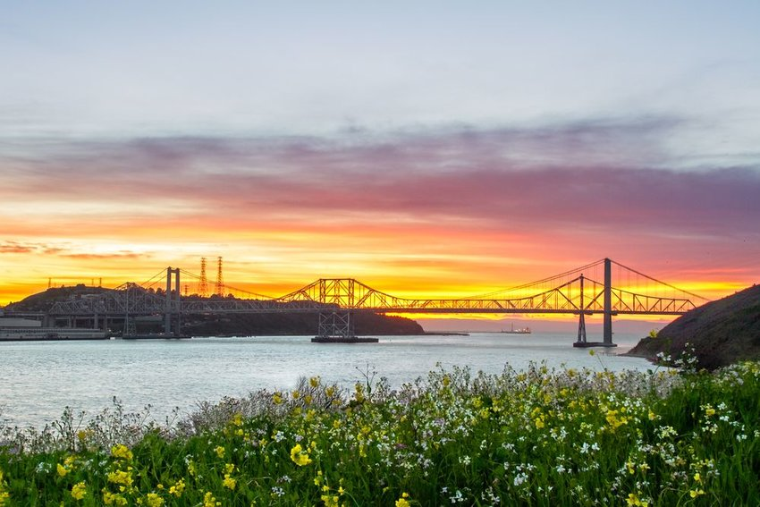 Bridge at sunset with wildflowers in foreground