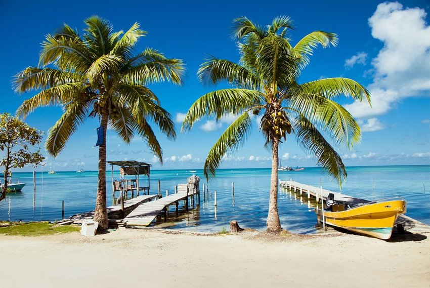Palm trees on a white sandy beach beside deep blue ocean, Belize