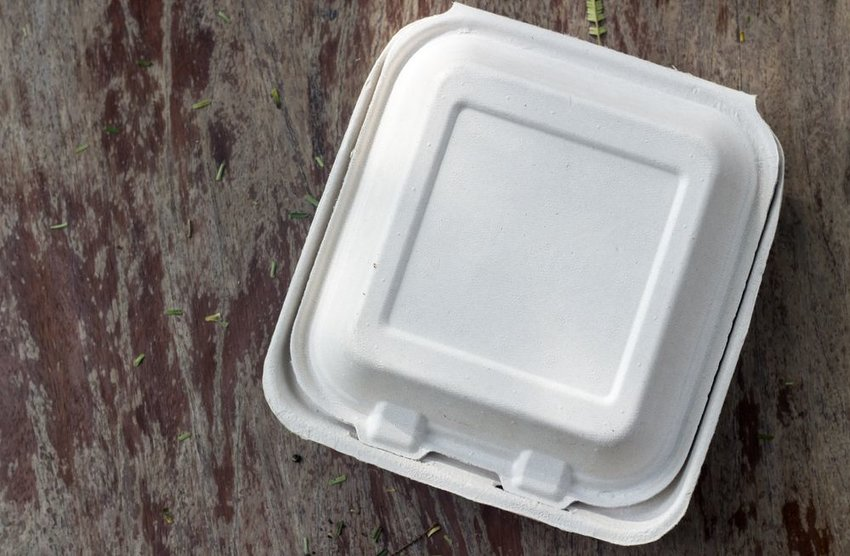 Overhead view of biodegradable to-go container on a wooden table
