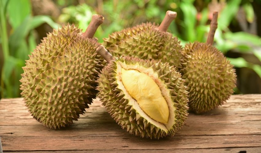 Spiny durian fruits on a wooden table, showing soft yellow interior and spikes