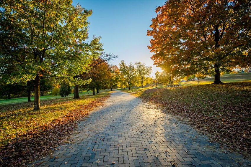 Walking path in park in Baltimore, Maryland with fall colored leaves on trees