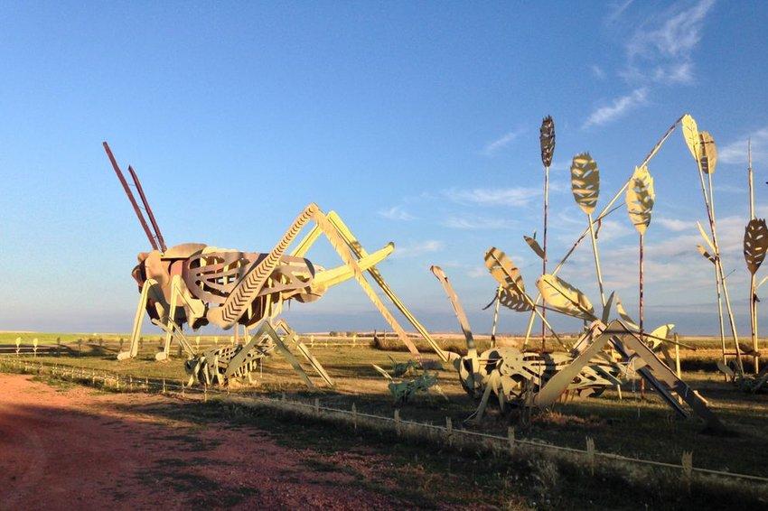 Metal grasshopper sculptures