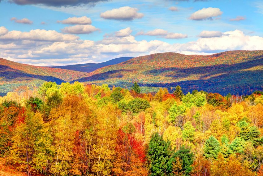 Autumn foliage in the Bershire Hills region of Massachusetts