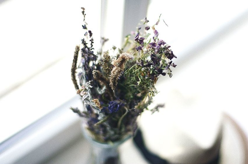 Dried flowers on a windowsill