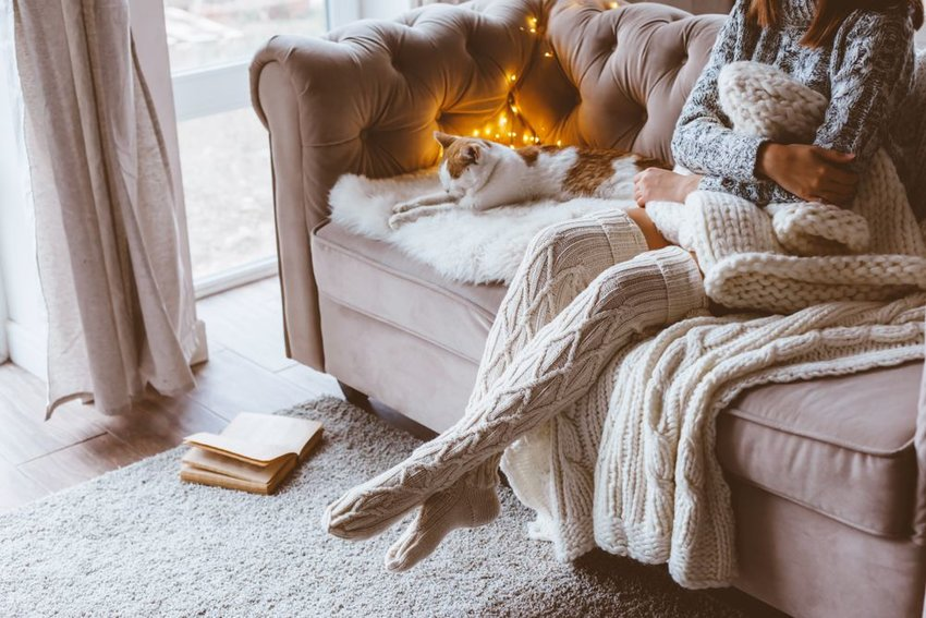 Person in cozy socks and sweater sitting on couch with cat and a book on the floor