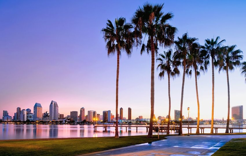San Diego skyline over the water with walkway and palm trees in front