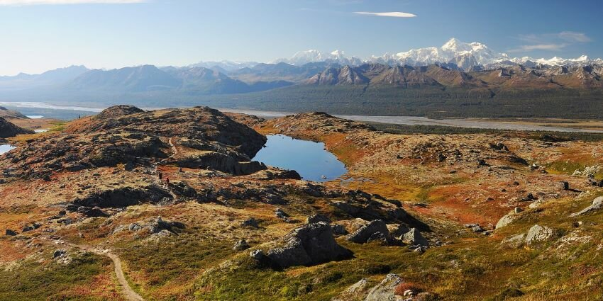 Kesugi Ridge landscape at Denali State Park, Alaska.
