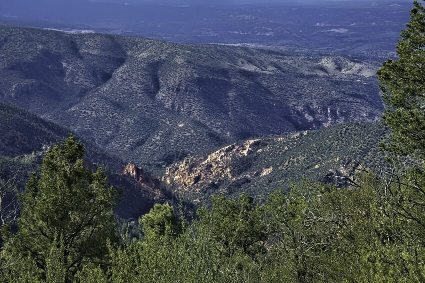 Gila National Forest from above.