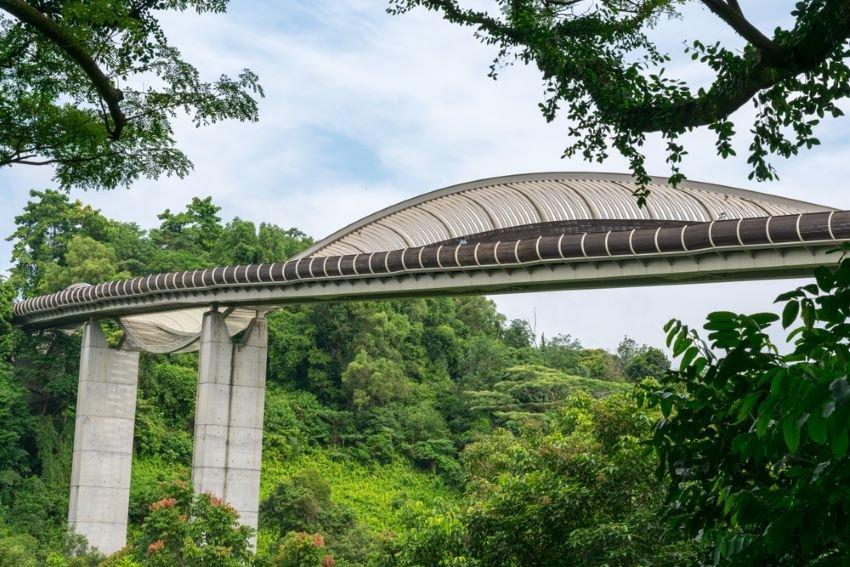 Wavy formation of Henderson Waves Bridge.