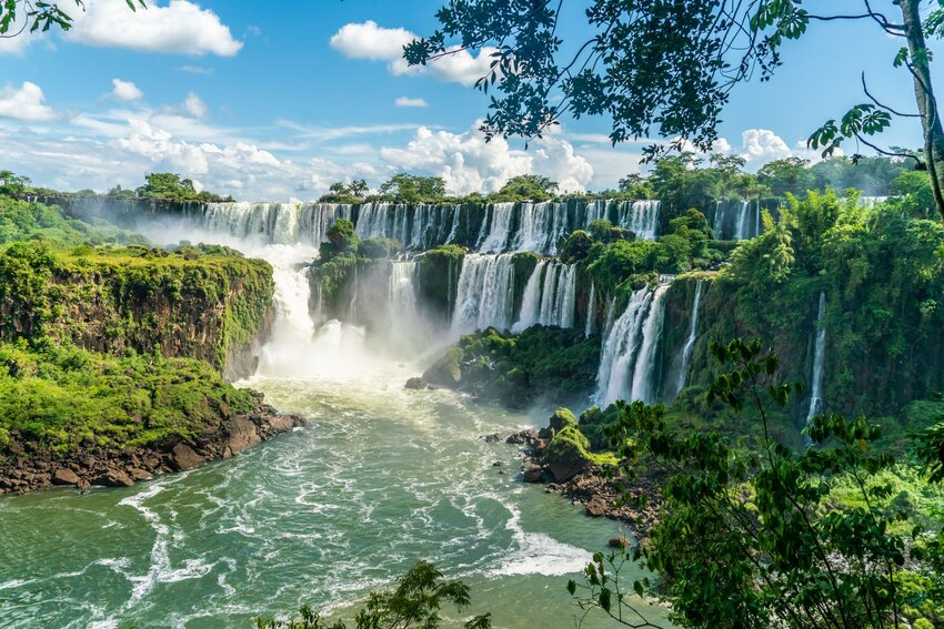 Looking through the trees at the many cascades of Iguazu Falls