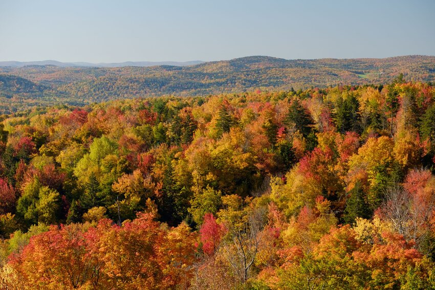 View of Vermont fall foliage from top of Hogback Mountain