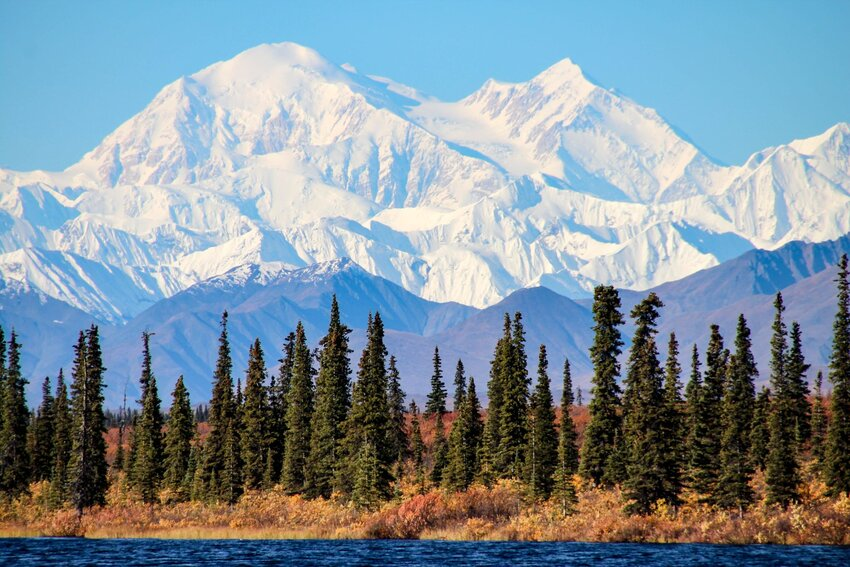 Evergreen-lined mountain lake with snow-capped Denali peak in background