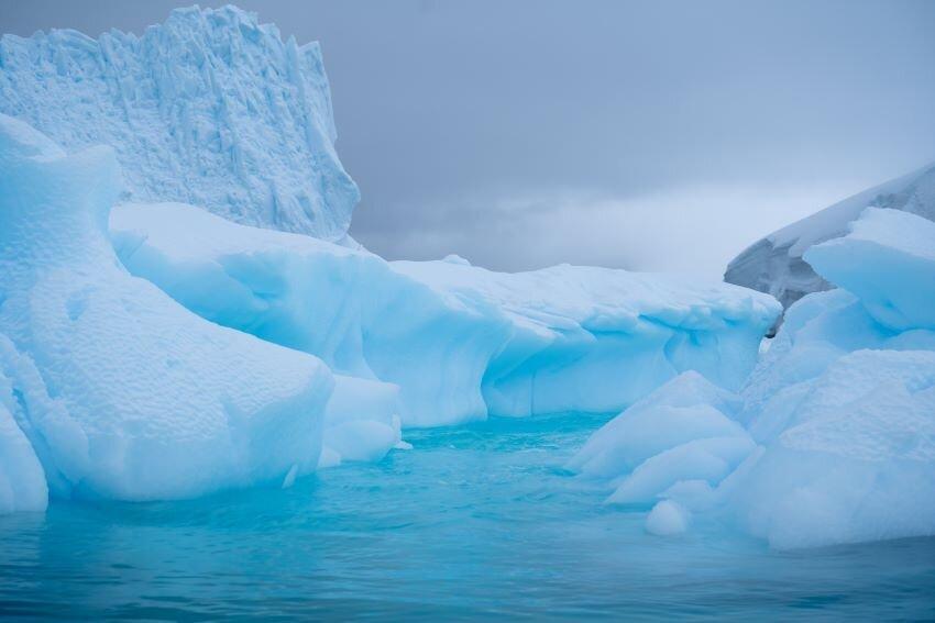 Ocean surrounding icebergs in Antarctica.