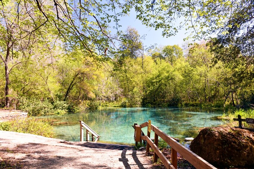 View of Ichetucknee Springs State Park and the water in Florida.