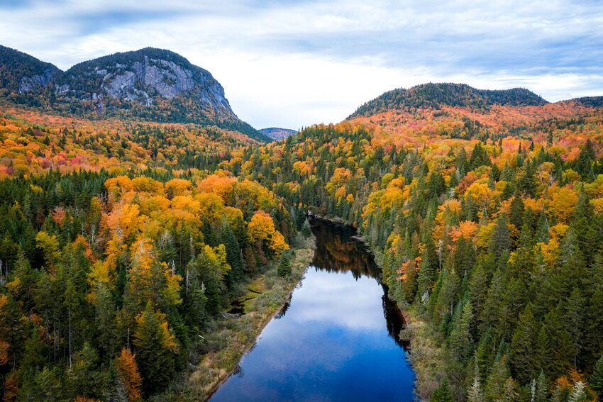 Aerial view of Boreal Forest Nature and River in autumn, Quebec, Canada.