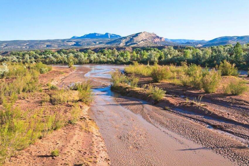 New Mexico desert landscape near Albuquerque.